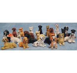 Honden set van 24