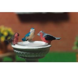 Vogels, 3 stuks
