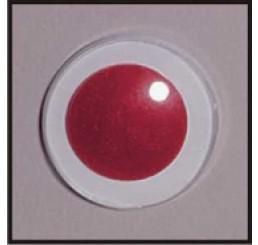 2 plak wiebeloogjes rood