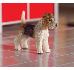 Tommy de Fox Terrier