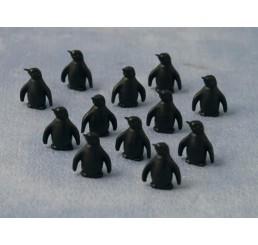 Penguin, 12 stuks