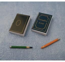 Notitieboekjes met pennen