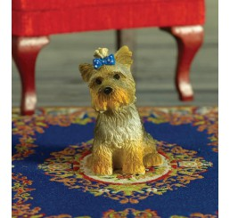 Boo de Yorkshire Terrier