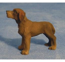honden puppies set van 12