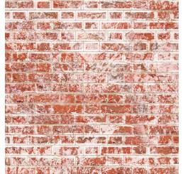 Oude vlaamse muurstenen