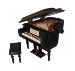 zwarte piano groot model