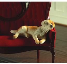 Ben, de slapende Labrador
