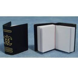 Boeken, open bladen, per 2 st.