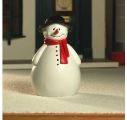 Roley de sneeuwpop