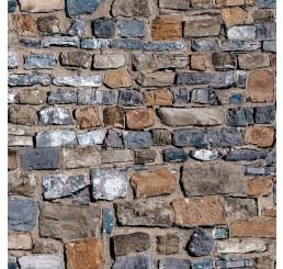 Oud stenen muurvel
