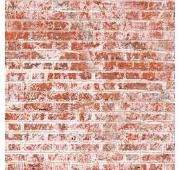Oude vlaamse muurstenen met relief