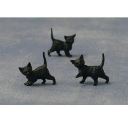Zwarte kittens, 12 stuks